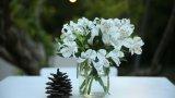 שוזרת פרחים לחתונה